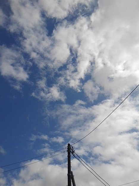 電柱の奥の空(9月28日)