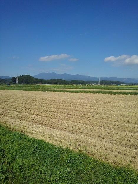 稲刈り後の水田の奥に山(9月22日)