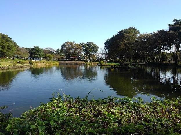 烏ヶ森公園の池の広域の眺め(10月3日)