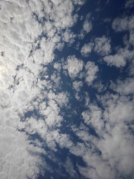 鱗雲(10月5日)