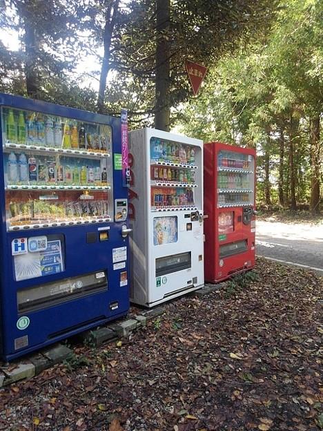 森の自動販売機(10月3日)