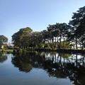 烏ヶ森公園の青く染まった池の景色(10月3日)