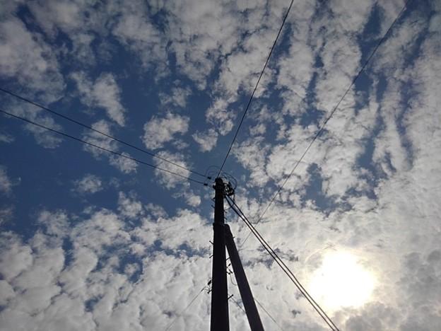 電柱の奥の鱗雲(10月5日)
