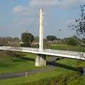 ゆうゆうパークの丘の上から見えた陸橋(10月15日)
