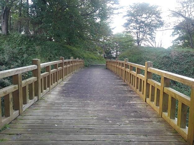 ゆうゆうパークの丘の陸橋・正面(10月15日)
