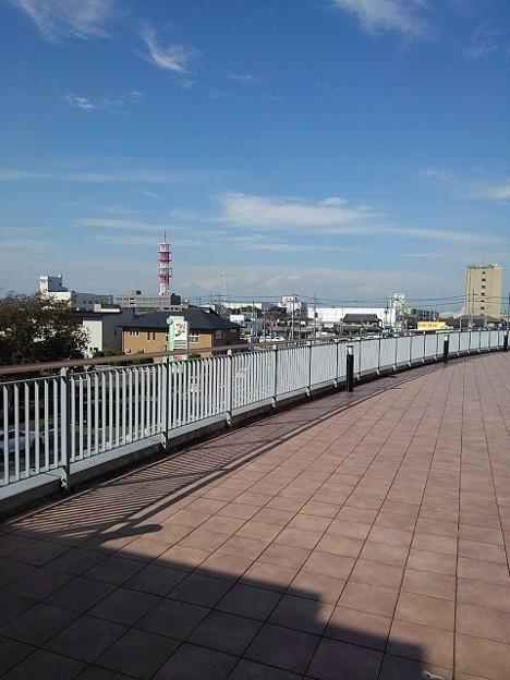 TOHOシネマズ宇都宮の近くの道(10月8日)