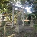 烏ヶ森公園の鳥居(10月3日)