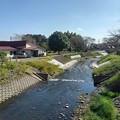 堰の上の川(10月11日)