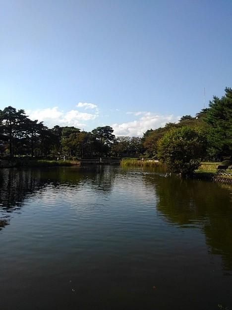 烏ヶ森公園の奥に小さく橋も見える池の景色(10月3日)