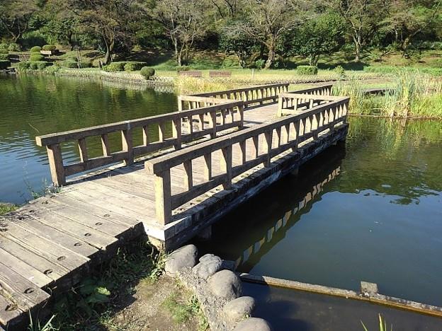 烏ヶ森公園の池の橋(10月3日)