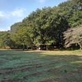 ゆうゆうパークの丘の休憩所(10月15日)