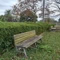 小さな公園のベンチのある景色(10月17日)