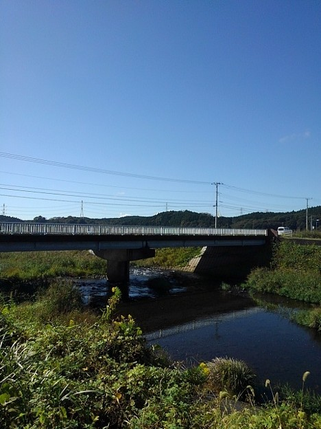 橋と川の景色(10月14日)