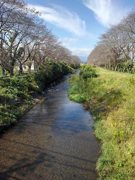 水の透明度の高い川(10月11日)