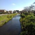 水の青も楽しめる川の景色(10月11日)