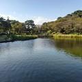 烏ヶ森公園の池と丸い街灯(10月3日)