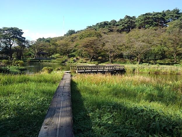 烏ヶ森公園の池の遊歩道(10月3日)