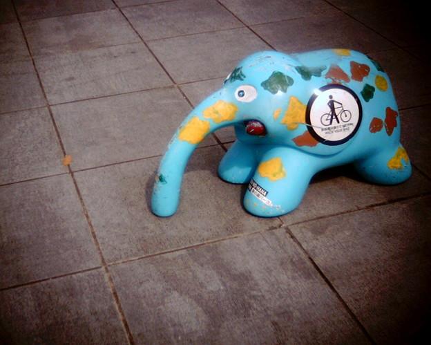 Photos: 象さん