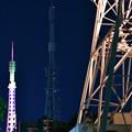 Photos: 三つの塔