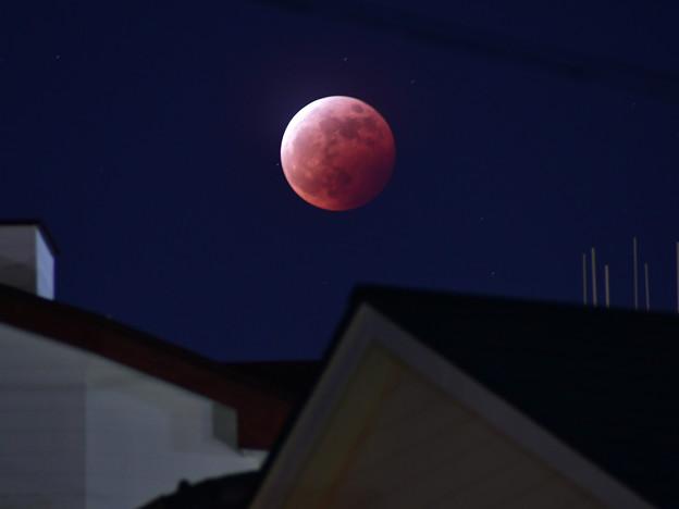 屋根上の月蝕