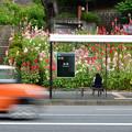 Photos: バスを待ちながら