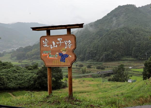 2012 9 12明日香案山子ロード
