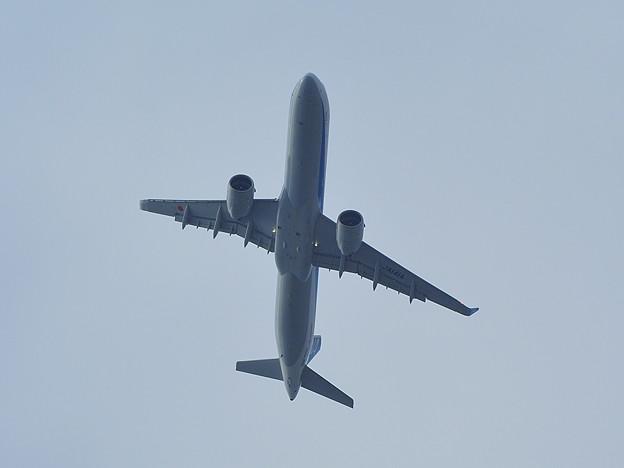 20210425飛行機02