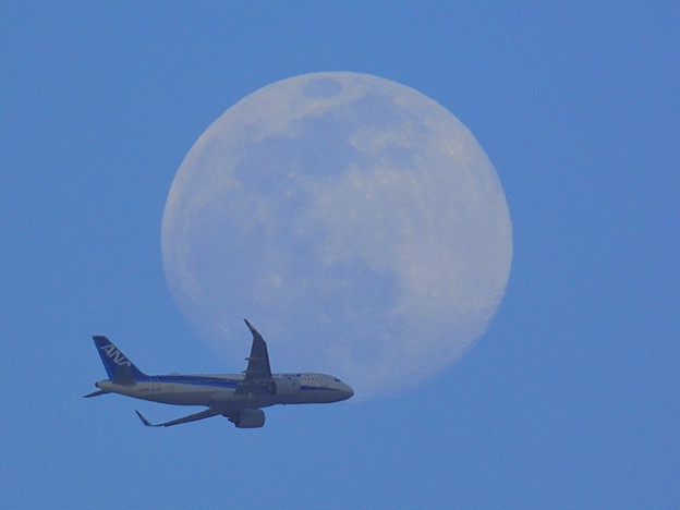 20210425飛行機と月02
