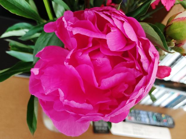 2021 母の日の花束