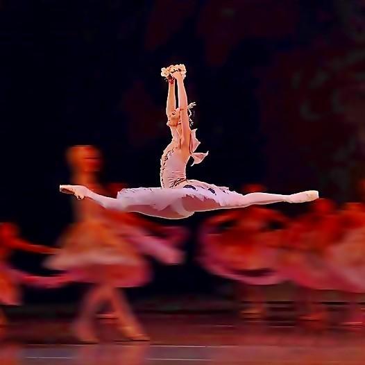 Beautiful Ballerina(6)
