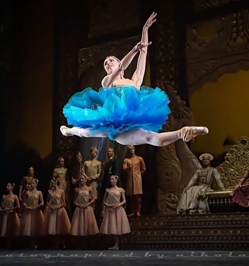Beautiful Ballerina(9)