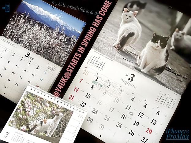 もぅお誕生2月終了3月開始starts in spring has come, my birth month in end.毎月恒例カレンダー岩合光昭にゃんこ癒し和む信州山花~春は来る#あれから10年