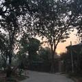 Photos: 2月28日の朝の太陽 (2)