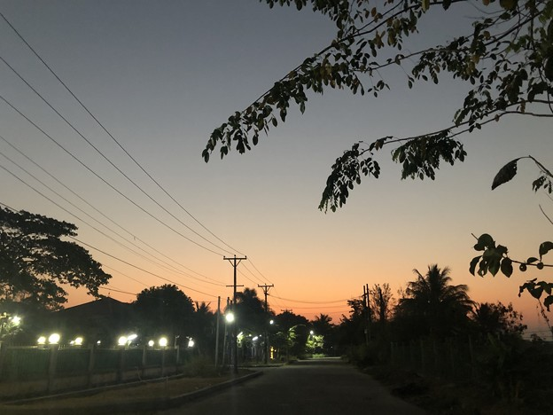 ヤンゴンのガーデンの朝 3月5日 (1)