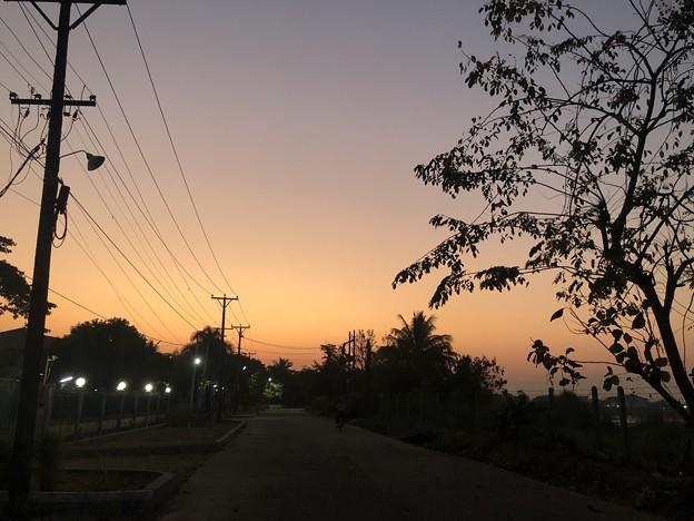 ヤンゴンのガーデンの朝 3月5日 (3)