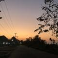 Photos: ヤンゴンのガーデンの朝 3月5日 (3)