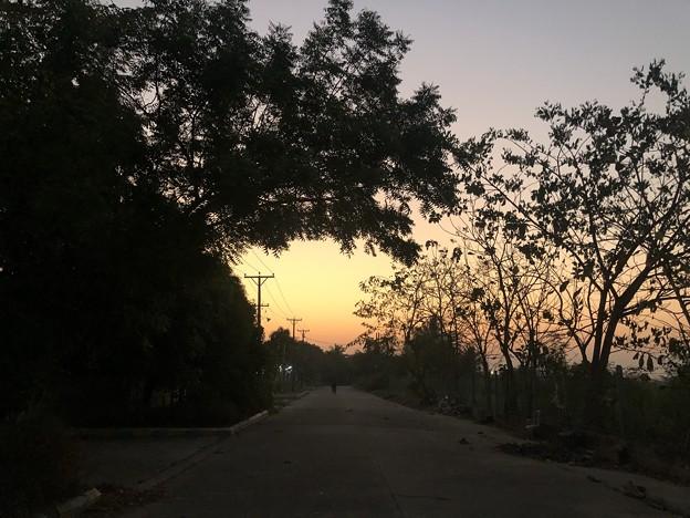 ヤンゴンのガーデンの朝 3月5日 (4)