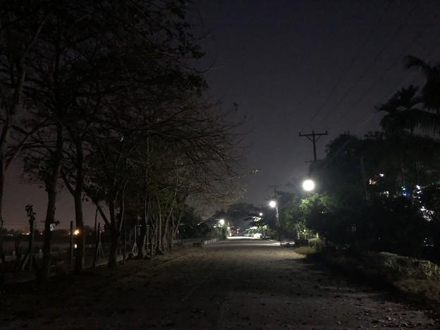 早朝のヤンゴン3月9日 (2)