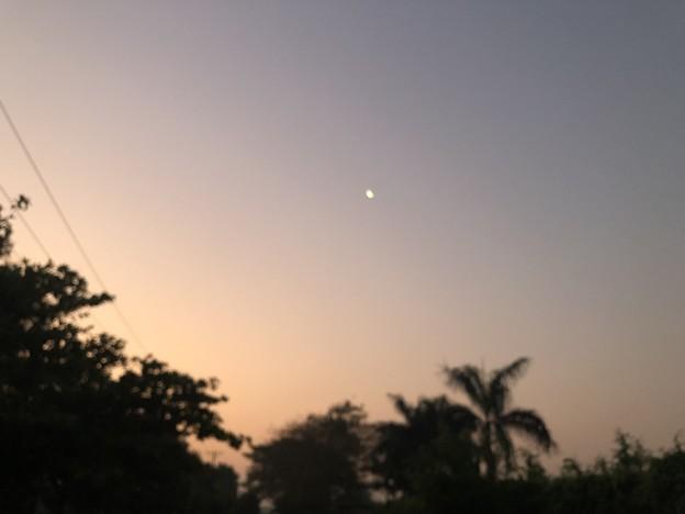 早朝のヤンゴン3月9日 (4)