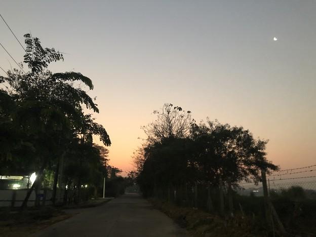 早朝のヤンゴン3月9日 (3)