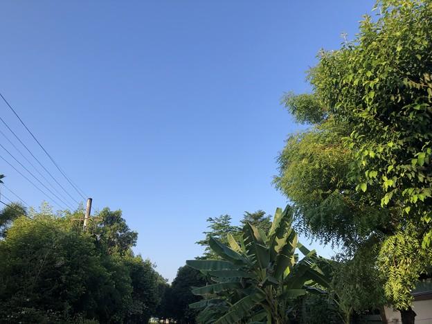 五月晴天のヤンゴン (2)
