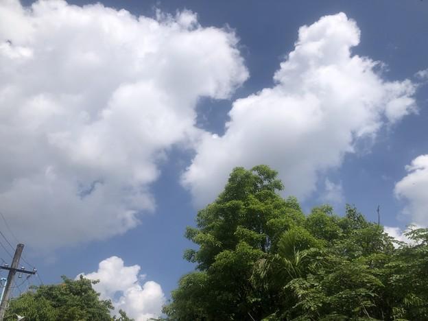五月晴天のヤンゴン (1)