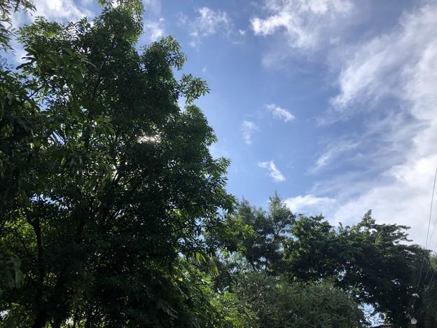 ヤンゴン7月10日の青空