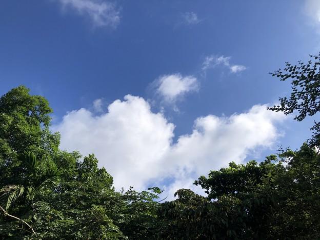 カレーの日の青空