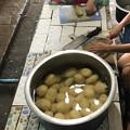 カレー120皿分 (7)