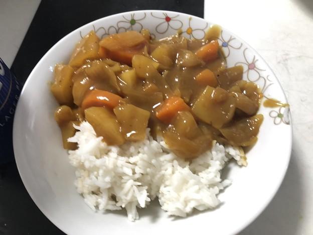 カレー120皿分 (14)
