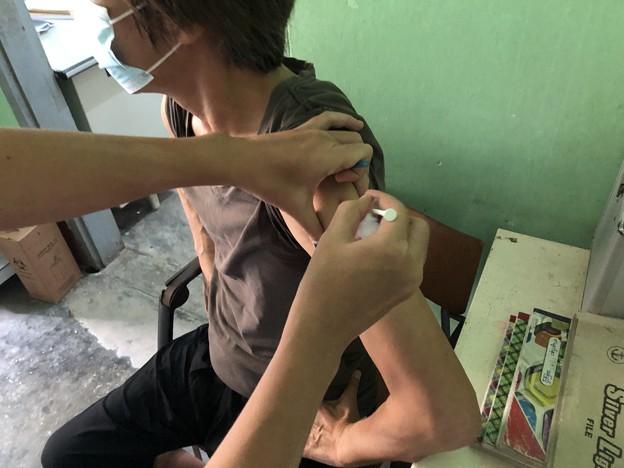 犬にかまれたので狂犬病ワクチン接種 (1)