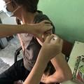 Photos: 犬にかまれたので狂犬病ワクチン接種 (1)