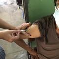 Photos: 犬にかまれたので狂犬病ワクチン接種 (2)
