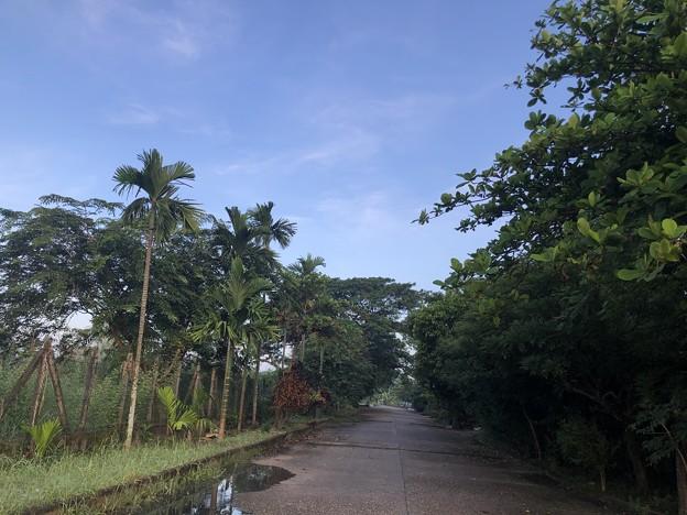 ヤンゴン10月9日の空とあふれた川 (2)